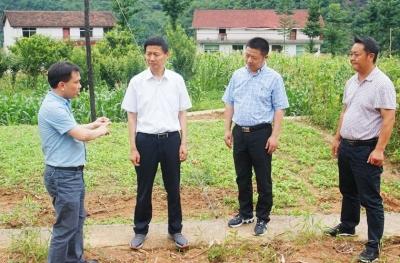 市人大常委会副主任、县委书记赵勇健到泾洋街道办检查指导脱贫攻坚工作