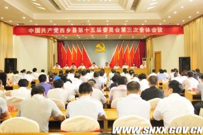 西乡县召开中国共产党西乡县第十五届委员会第三次全体会议
