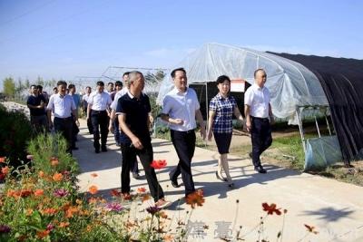 郑永涛调研现代农业及产业扶贫工作
