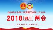 2018铜川两会-委员建言献策 反映社情民意